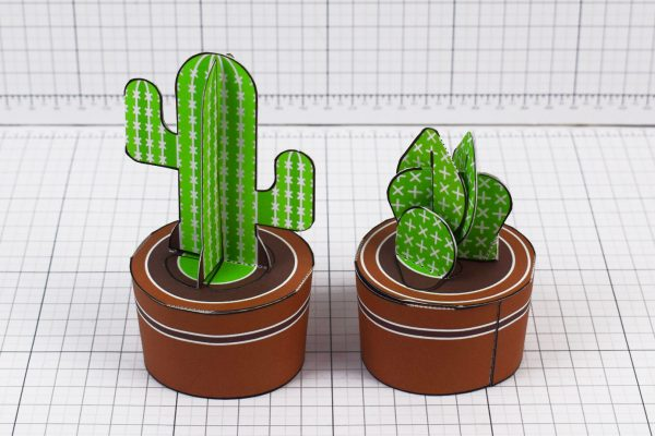 PTI - ENKL Cactus Collection Paper Toy Image Twinkl - 1