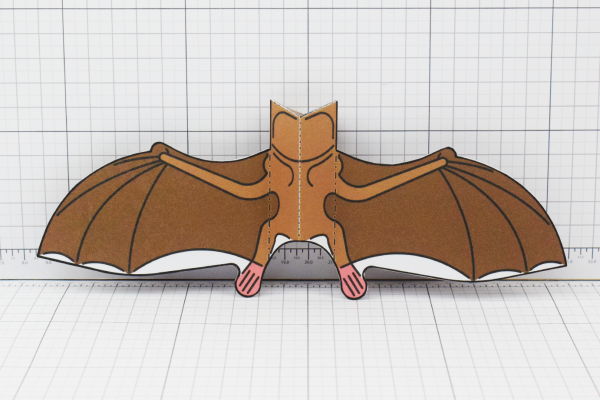 PTI Halloween Vampire Bat Paper Toy Image from Twinkl - Back