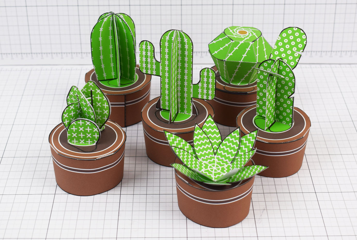 PTI - ENKL Cactus Collection Paper Toy Image Twinkl - Main