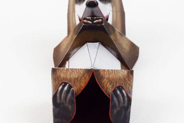 PTI-Wilflife Charity - X Otter 2